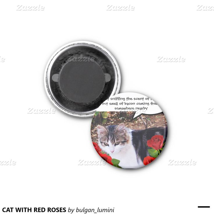 CAT WITH RED ROSES AND BACON 2 INCH SQUARE MAGNET