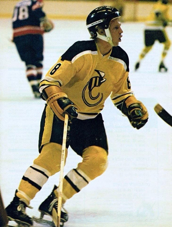 Robbie Ftorek was a weapon in the WHA.
