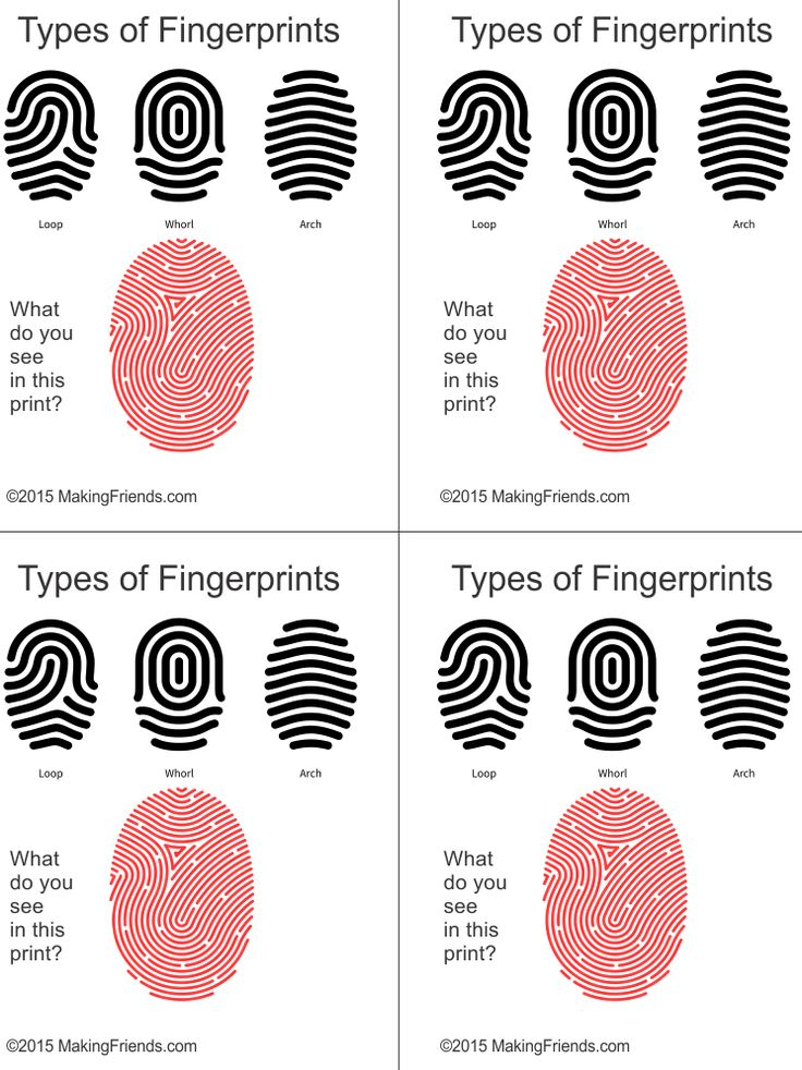 Types Of Wine Bottles Infographic: Junior Detective Badge Fingerprint Types Free Printable