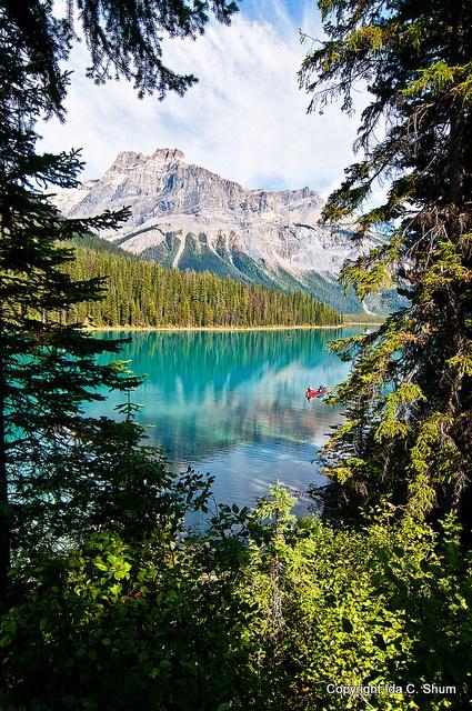 Emerald Lake Framed ,Alberta, CA
