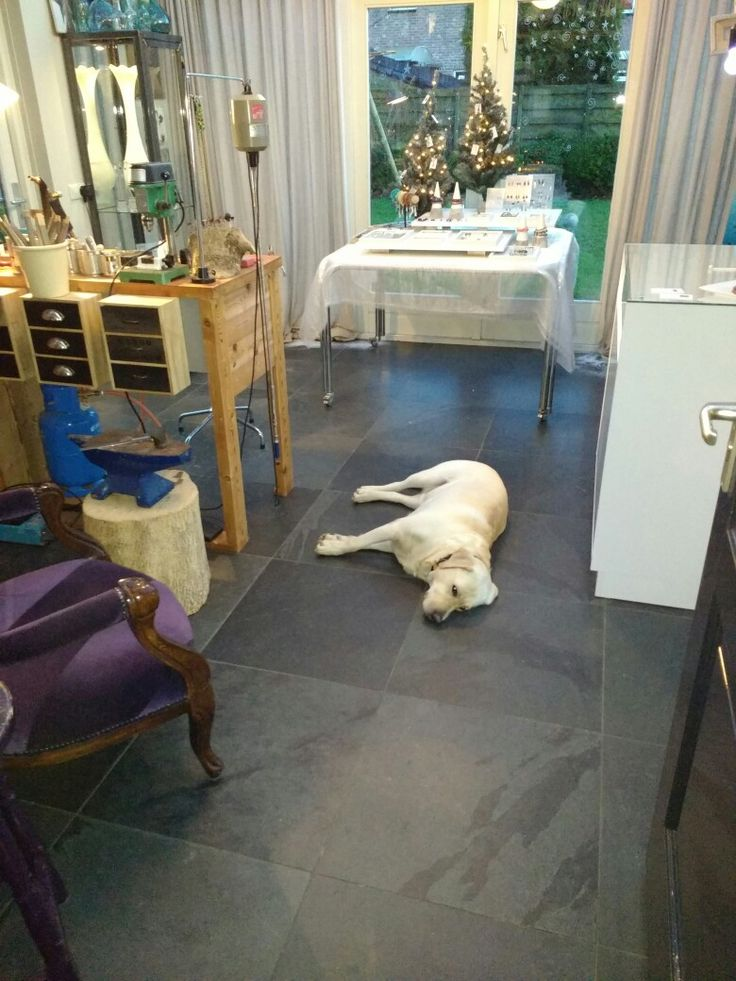 Kerst expositie met de waakhond in atelier 2016.