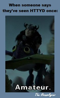 Seriously. How is it possible to only watch HTTYD once!?<---- I've seen it enough times to literally learn every line in the movie. No like SERIOUSLY