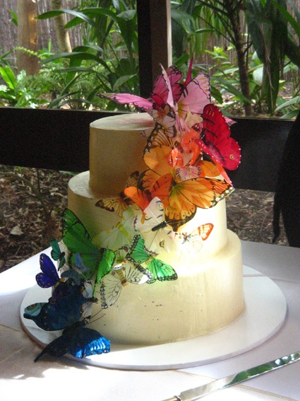 wedding cakes oceanside ca 50 best wedding cakes babycakes images on 25160