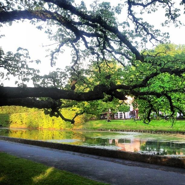 #Oliwa #Park in #Gdansk