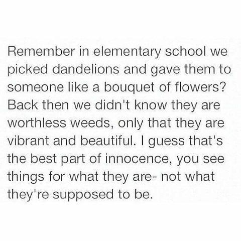 remember in elementary school we picked dandelions and gave them to someone like a bouquet of flowers? back then we didn't know they are worthless weeds, only that they are vibrant and beautiful. i guess that's the best part of innocence, you see things for what they are - not what they're supposed to be