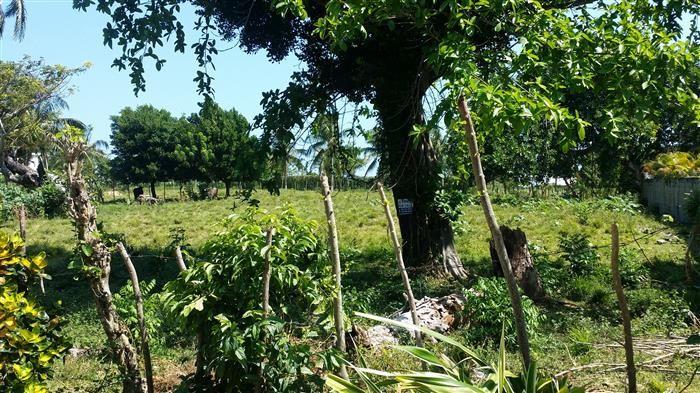 Cabarete, Dominican Republic www.coldwellbanker.com