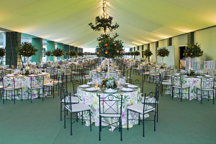 ¿Has pensado decorar tu boda con motivos de naranjas? En www.NaranjasKing.com te aconsejamos cómo hacerlo.