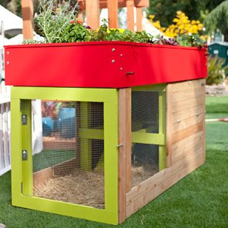 I want some chickens, just two.  This is a cute idea.  Chicken coop or rabbit cage