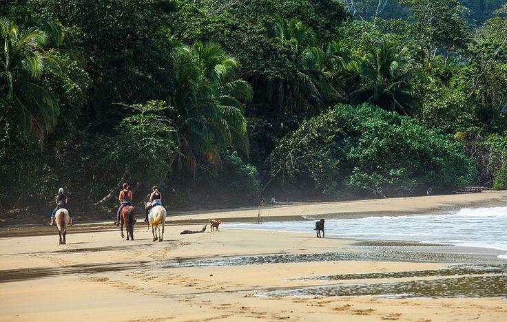 36++ Costa rica health care cost ideas in 2021