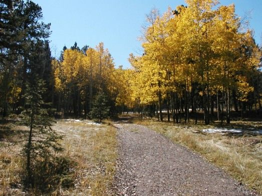 Trails that offer beautiful views of Colorado's fall colors!