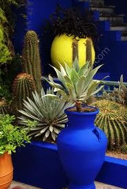 I want to paint big vase planters this color electric blue.
