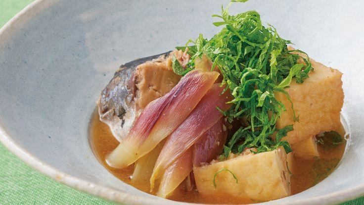 さば缶のさっぱり南蛮 レシピ 斉藤 辰夫さん|【みんなのきょうの料理】おいしいレシピや献立を探そう