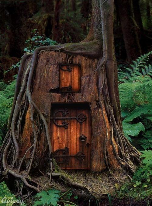 Tree Stump Home For The Fairies.