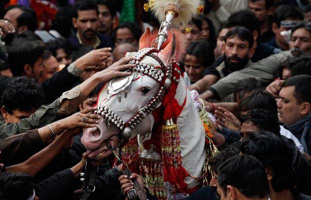 Google Image Result for http://i.telegraph.co.uk/multimedia/archive/01787/Ashura-pak-horse_1787918i.jpg