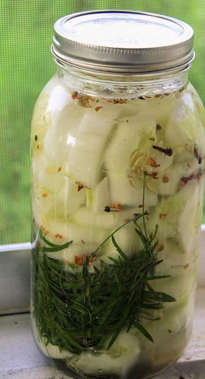 Besides the health benefits, one of the many wonders of using lactic acid fermentation as a means of preserving food is its versatility. While this recipe has that perfect dill and garlic cucumber pickle