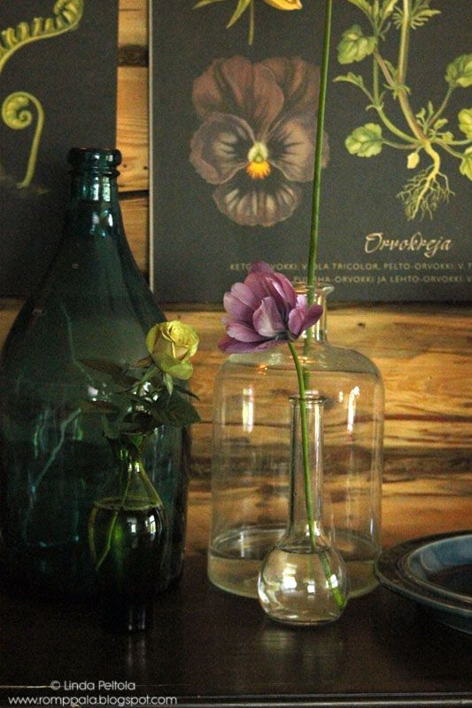 Romppala - Lindan pihalla: Botanical-tyyliin