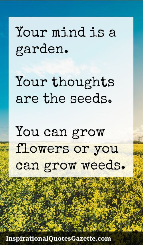 Inspirational Quote: Your mind is a garden. Your thoughts are the seeds. You can grow flowers or you can grow weeds.  Inspirational Quotes Gazette