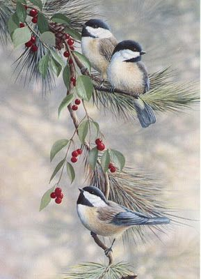 Christmas birds: this background makes it very realistic