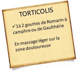 soigner un torticolis avec le Romarin à camphre ou la gaulthérie