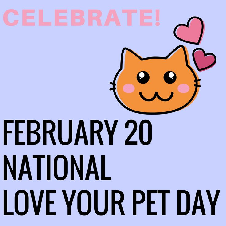 National Love Your Pet Day February 20 Love your pet