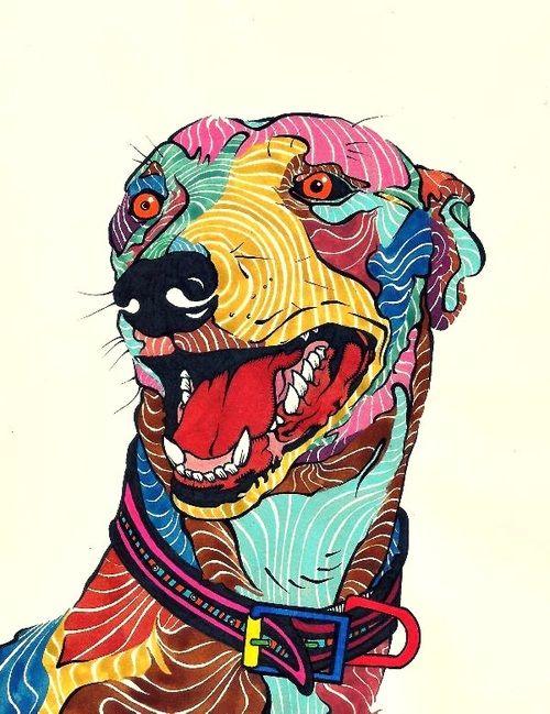 kaelkasabian: Dog - Perro - Galgo - Colors. via Tumblr