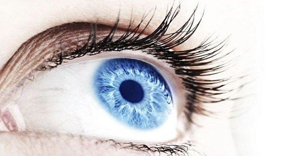 To most people eye color means nothing more than the hair color or the size of a person's ears. In fact, it's quite logical to believe so. But, when it comes to blue-eyed people, science has some interesting facts to reveal.  1# Blue eyes don't have a set color. In fact, they...