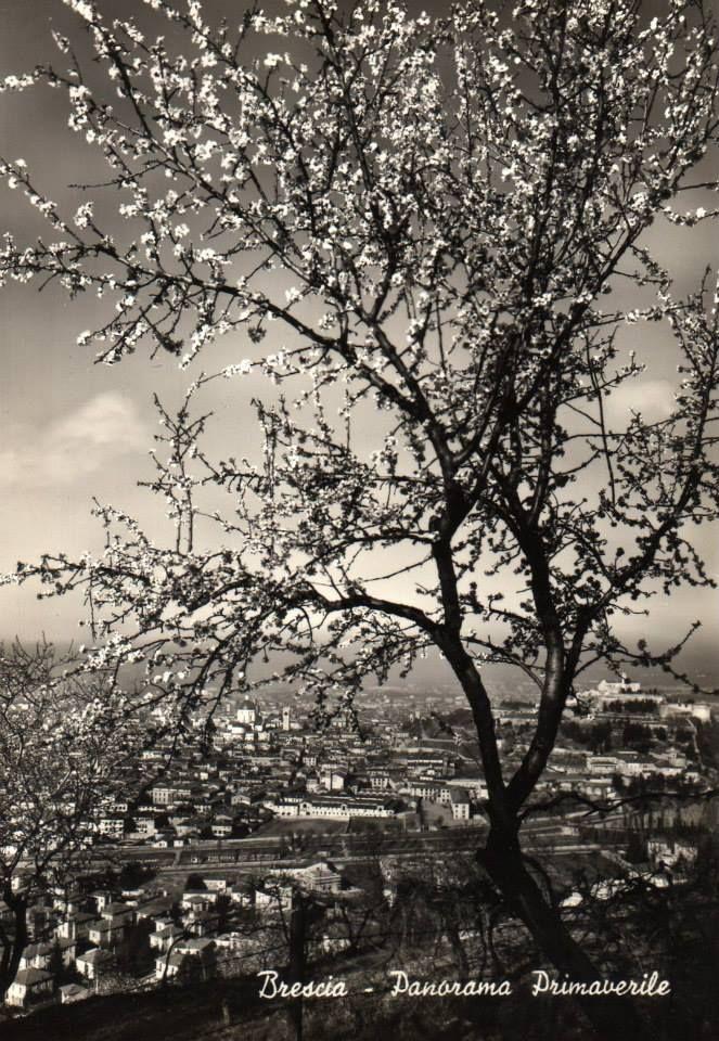 Panorama di Brescia Immagine inviata da Luisa Lamberti http://www.bresciavintage.it/brescia-antica/cartoline/panorama-brescia/