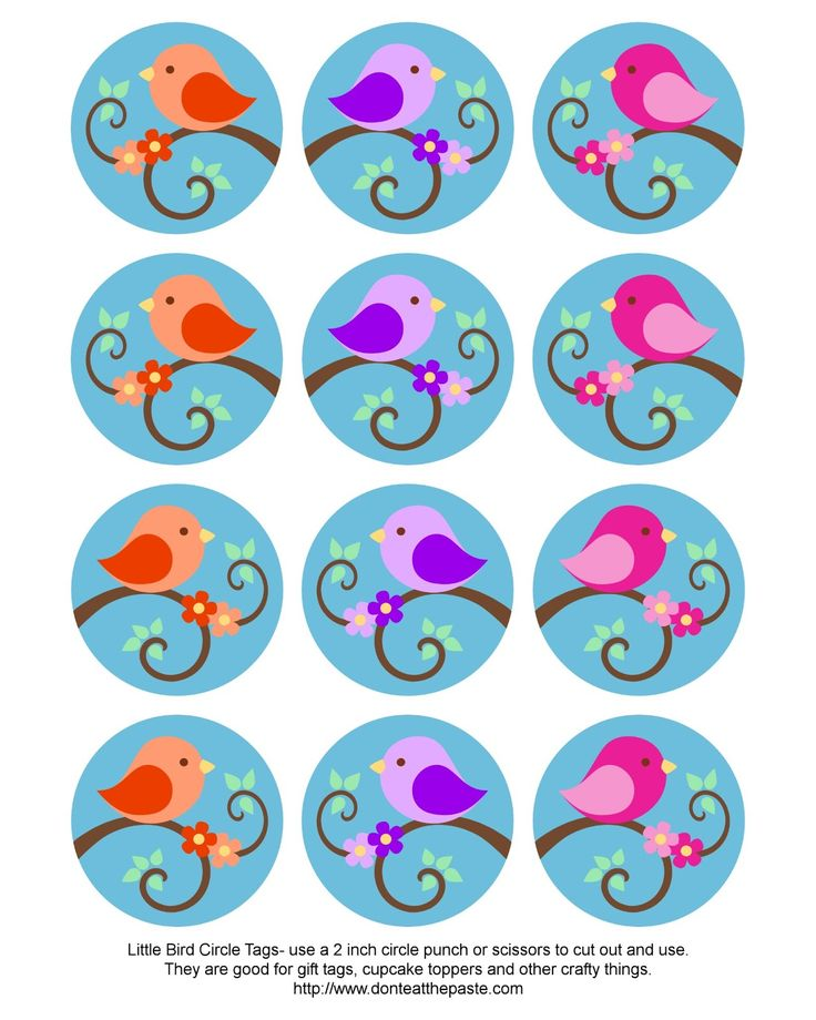 Don't Eat the Paste: Little Bird Circle Tags