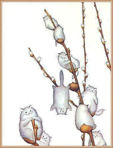 little catkins