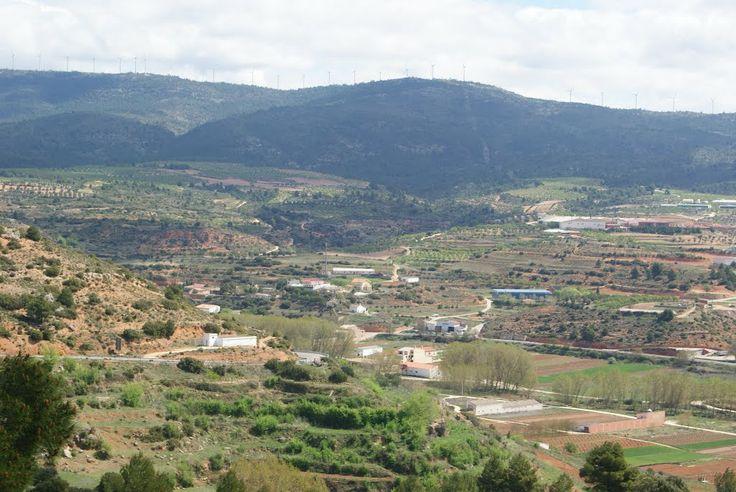 Vega del rio Mira