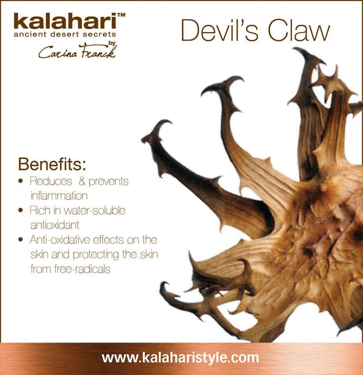 Our anti-inflammatory key ingredient: Devil's claw root extract! The African plant the Devil's claw is a powerhouse of antioxidants and anti-inflammatory phytochemicals. Therefore you will find it in our products such as the Skin Brigthening Gel and Oily Skin Correction Gel to combat inflammation!