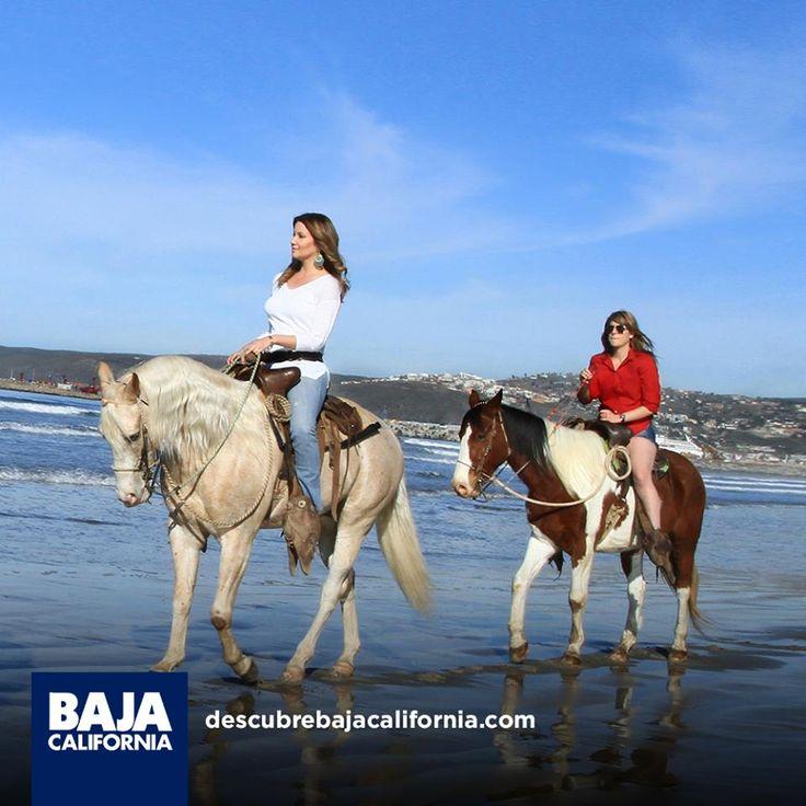 En tu visita a #BajaCalifornia, realiza un paseo a caballo con tus amigos. 🐴 Inicia tu aventura visitando: www.descubrebajacalifornia.com #Fall #Photography #Leaves #Trees #Fashion #Art #Nature #love #instagood #photooftheday #tbt #beautiful #cute #me #happy #fashion #followme #follow #selfie #picoftheday #friends #instadaily #girl #fun #tagforlikes #smile #PassportReady #ISeeFaces #RTW #TTOT #TravelAddict  #SinFiltros #NoFilter #BajaCalifornia #DiscoverBaja #DescubreBC #EnjoyBaja…