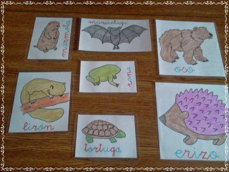 tarjetas de animales que hibernan