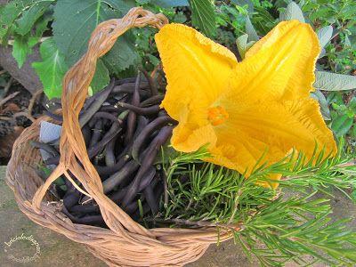 Briciole di Sapori           : Riso ai fiori di zucca e zucchine (gli ultimi fior...