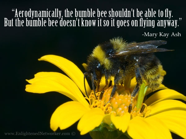 """Bee Quotes: """"Aerodynamically, The Bumble Bee Shouldn't Be Able To Fly"""