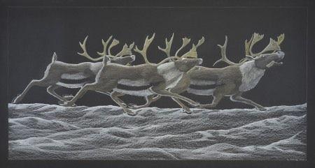 Tim Pitsiulak - Three Running Caribou 32.5 x 59.5 Coloured pencil (186-0515)