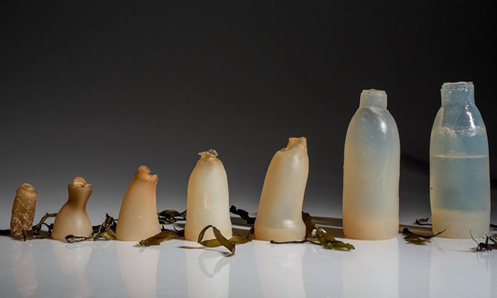 Americans throw away 35 billion plastic bottles every year and that's a problem because it takes plastic around 450 years to decompose, which is kind of a long time. Ari Jónsson is a product design
