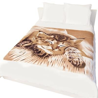 FOR THE CAT LOVERS!  Warm, cozy and incredibly soft!! Our cat design polar fleece blanket and cushion set is perfect for the coming colder months! Comes with a matching pillow cushion too!  Find it here: http://goo.gl/3llPbK