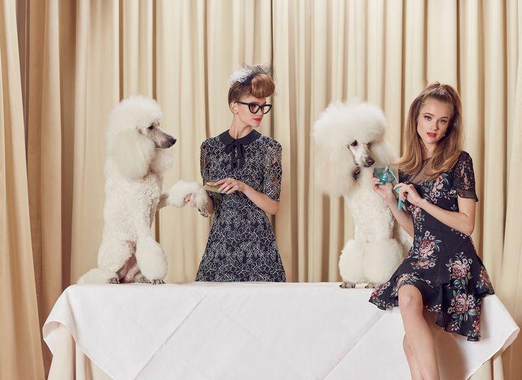 Idaho Dress  (Coming Soon)   Black and Cream   Dress  Samara Dress   Multi   Dress
