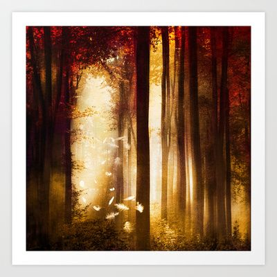Forest with light glow and falling feathers.  Dreams by Viviana Gonzalez.  #artprint