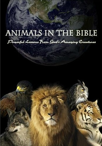Animals in the Bible - Christian Movie/Film on DVD. http://www.christianfilmdatabase.com/review/animals-in-the-bible/