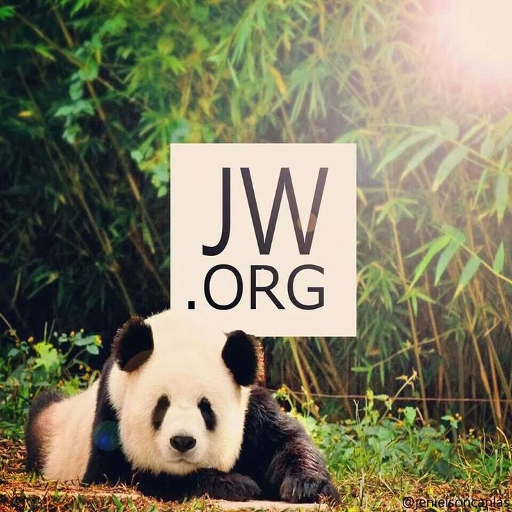 ♥ jw.org This reminds me of paradise