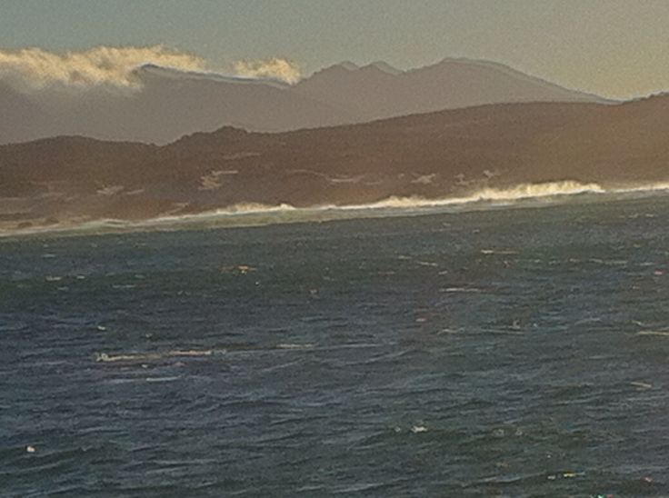 Hermanus,Cape Town, South Africa