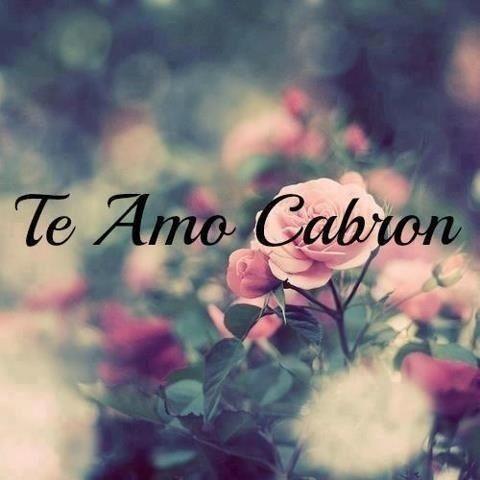 Te amo ♥                                                       …                                                                                                                                                                                 More