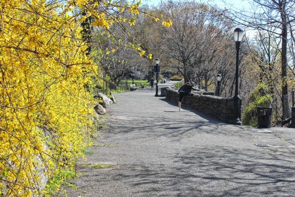Uptown's Fort Tryon Park is tops for a nature walk via @NYDailyNews #WHIN #NYC