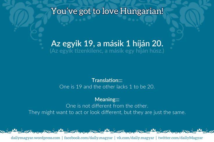 Hungarian proverbs #42  Az egyik 19, a másik 1 híján 20. (Az egyik tizenkilenc, a másik egy híján húsz.) https://dailymagyar.wordpress.com/2015/08/15/hungarian-proverbs-42/