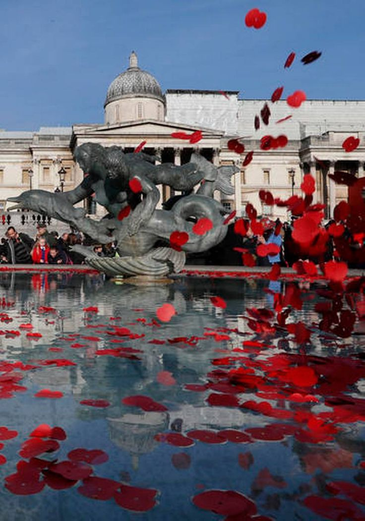 Poppies are thrown into the fountain in Trafalgar Square to mark Armistice Day in London, Friday, Nov. 11, 2016. A commemoration service and two minute silence was held in the Square to mark a national day of remembrance.