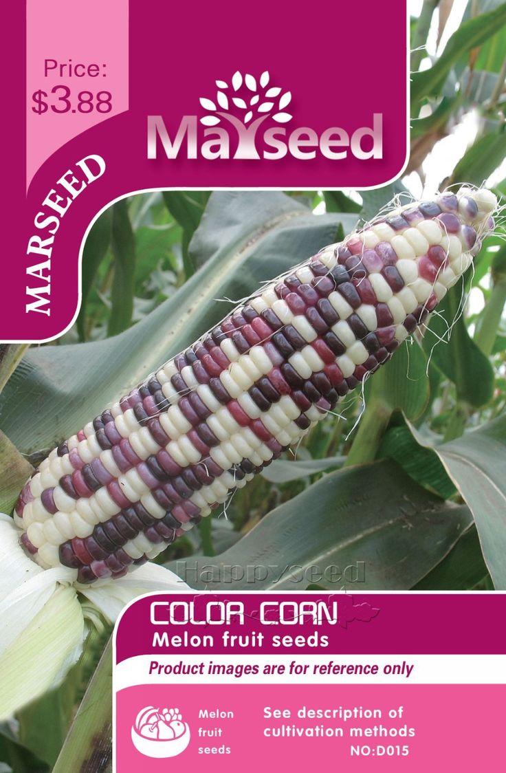 Marseed Sentimento Bom 50 Cores Sementes de Milho Vegetais Ótimo Complemento para O Seu Jardim(China (Mainland))