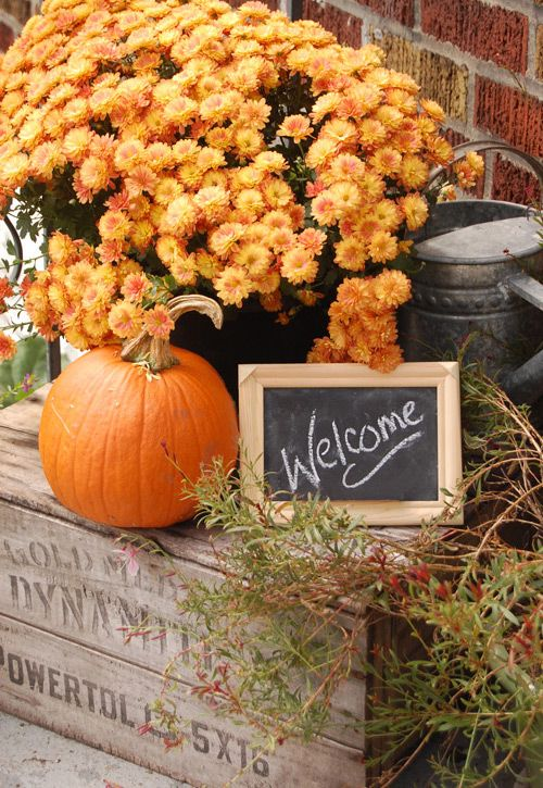 crate, pumpkin, mums, watering can, chalkboard welcome sign
