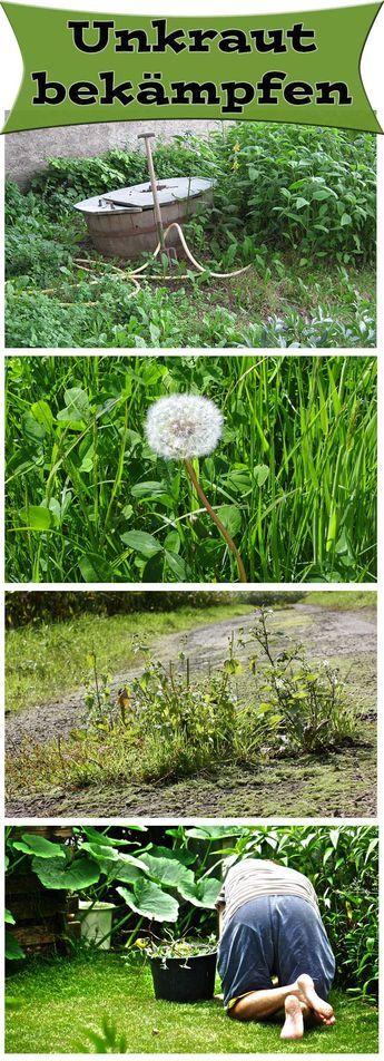 17 Best Images About Pflanzen On Pinterest | Gardens, Landscaping ... Tipps Pflanzenpflege Hausmittel